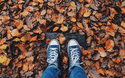Autumn Blues?